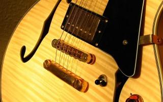Полуакустическая гитара – выбор новичков и профессионалов