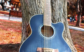 12 струнная акустическая гитара