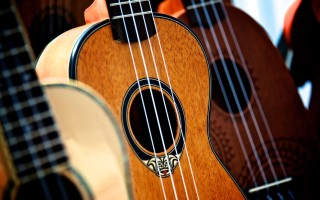 Бренд имеет значение: выбираем музыкальный инструмент по производителю