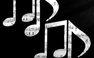 Особенности расположения октав на гитаре